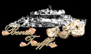 bencic_truffles_logo_400_trans